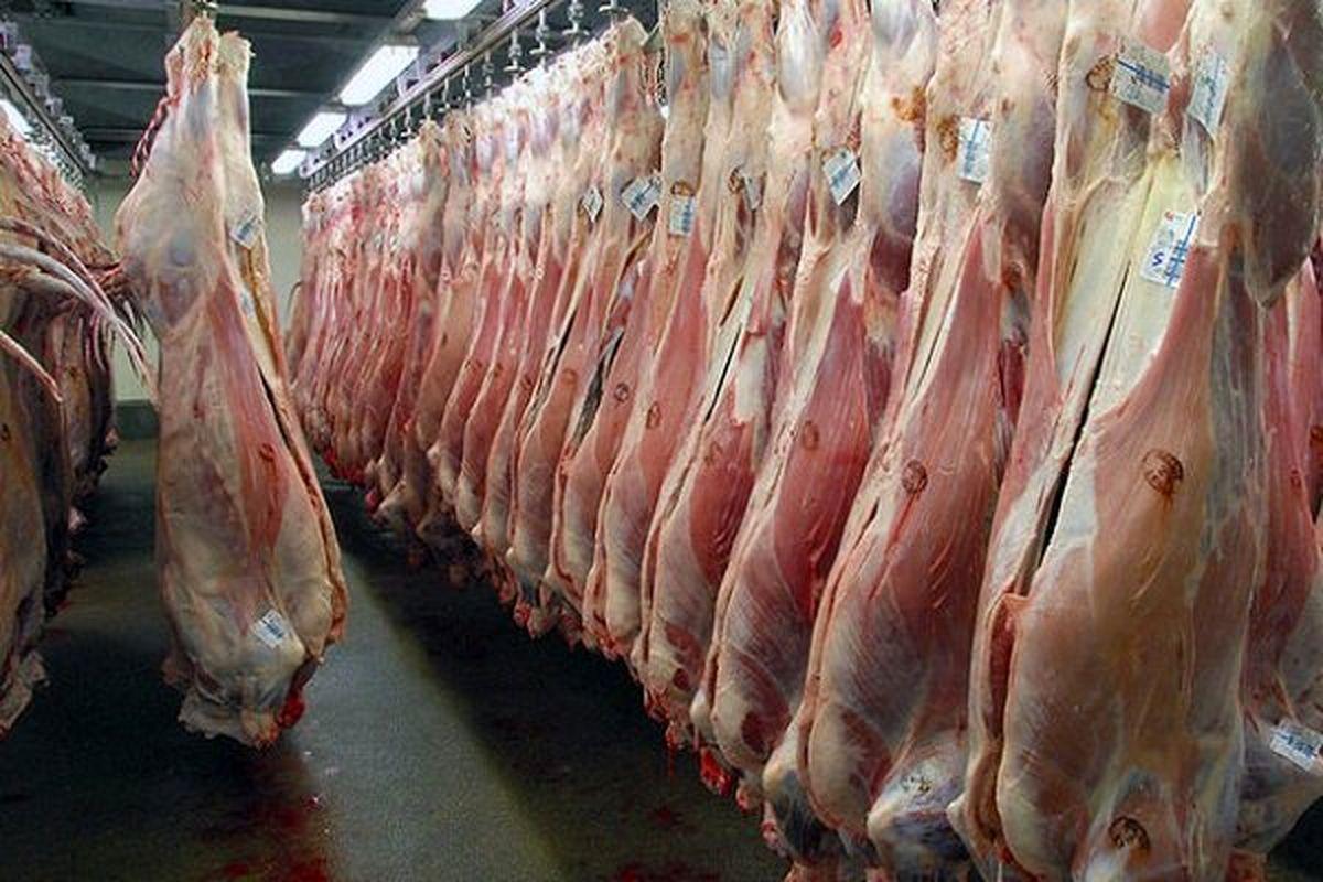 توزیع گوشت اسب در رستورانهای تبریز؛ ماجرا چه بود؟