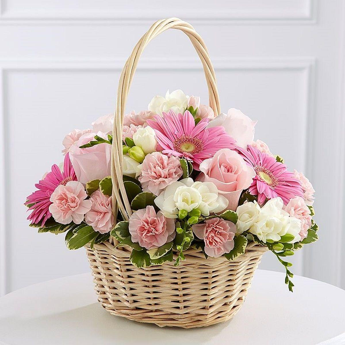 تهیه گل تبریک برای روز دندان پزشک