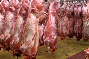 قیمت گوشت قرمز ثابت شد/قیمت گوشت امروز چقدر شد؟